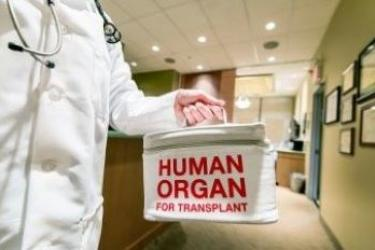 Person in medical coat holding box labeled Human Organ